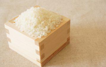 お驚きの保湿力。お米の力で乾燥肌もふっくら美肌に